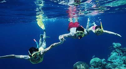 We Love Snorkelling